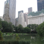 We walked Central Park on day 3. It's incredibly quiet and serene to be in a huge metropolitan area.